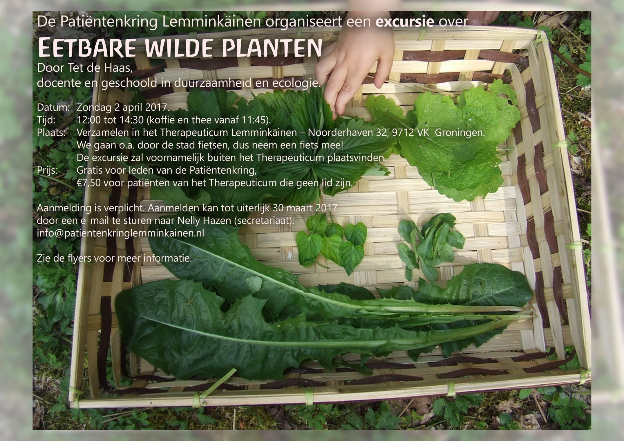 grotere versie poster van excursie over eetbare wilde planten